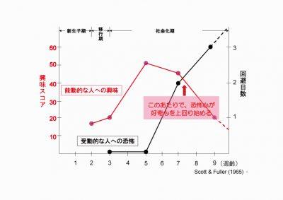 社会化グラフ